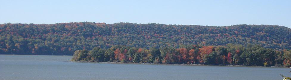 Panoramic River and Fall Tree View